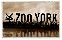 Молодежный бренд Zoo York